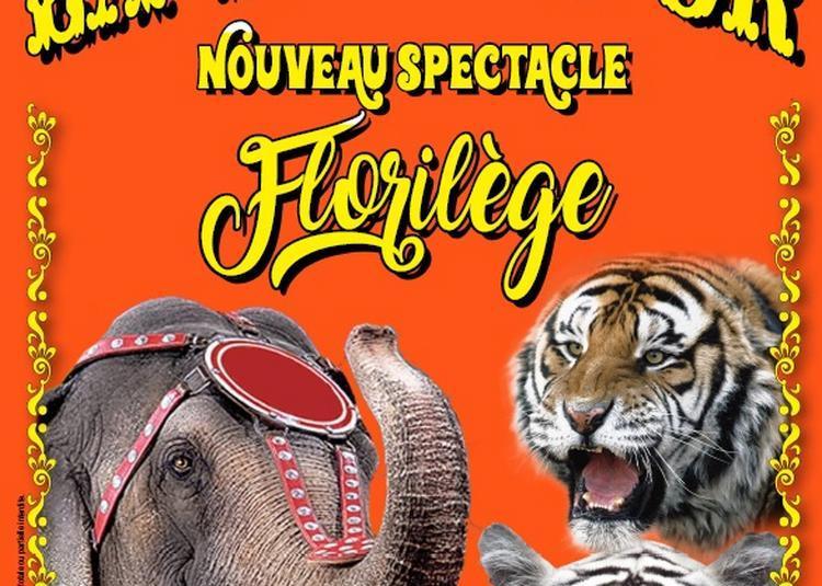 Le Cirque La Piste d'Or à Saint Brevin les Pins