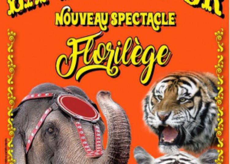 Le Cirque La Piste D'Or A Machecoul