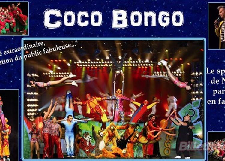 Le Coco Bongo à Evreux