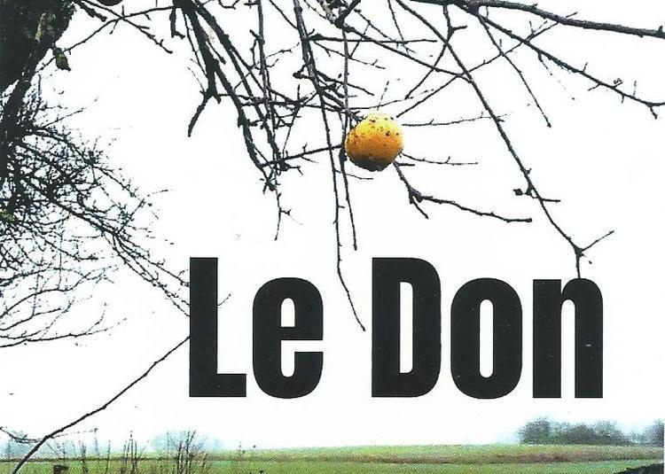 Le Don à Avignon