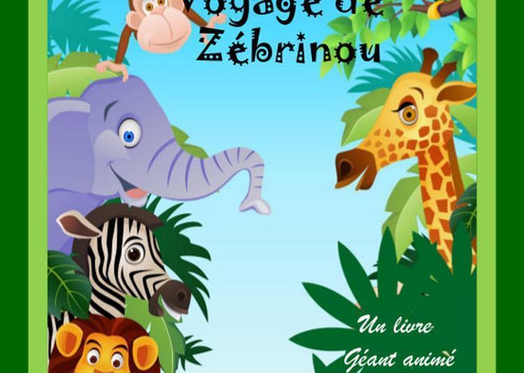 Le Fantastique Voyage De Zebrinou à Saint Etienne