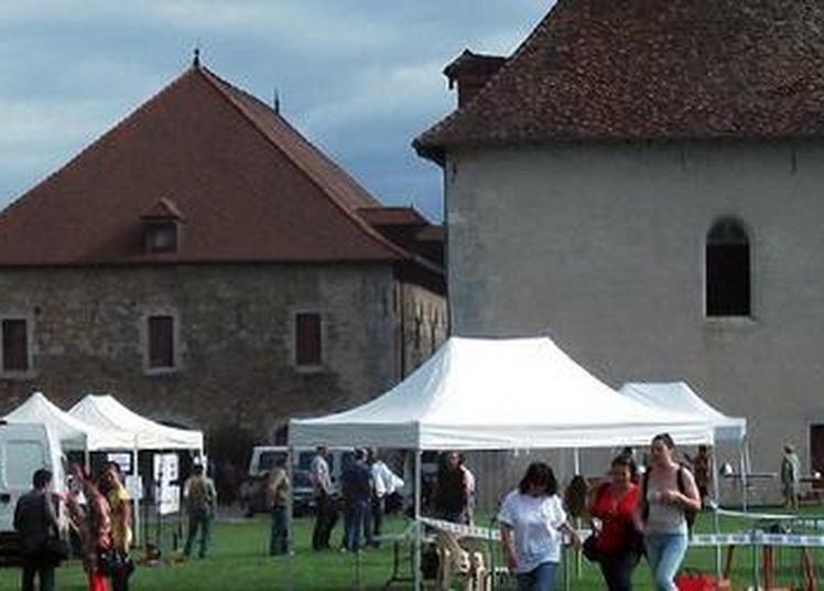 Le fort en fête à Barraux