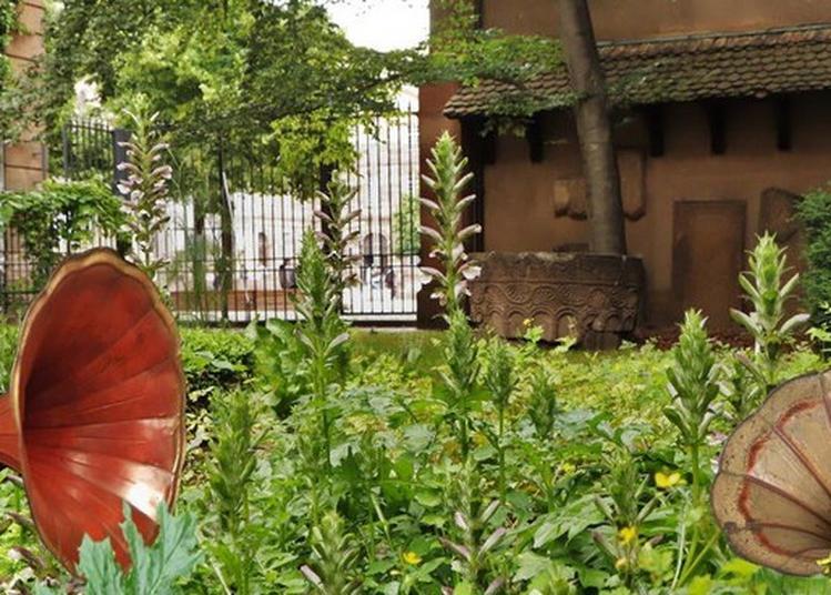 Le Jardin De L'ouïe, Une Promenade Sonore Dans Le Jardin Du Musée à Strasbourg