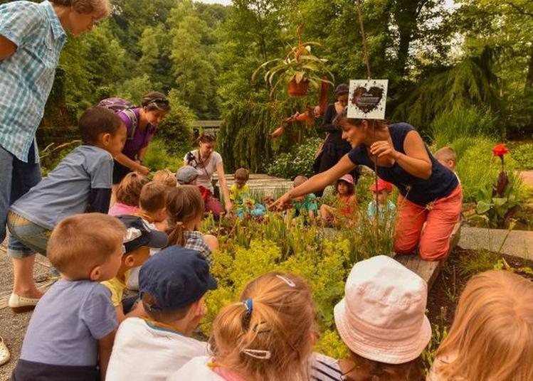 Le Jardin Des Enfants à La Sone