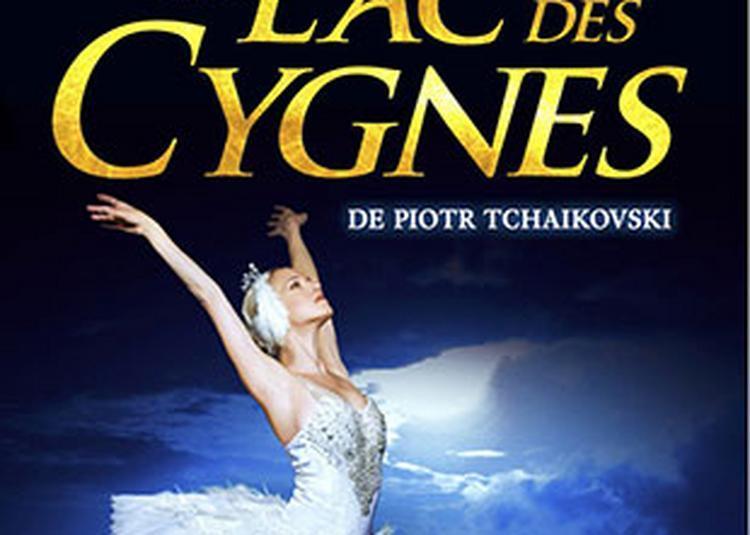 Le Lac Des Cygnes à Saint Etienne