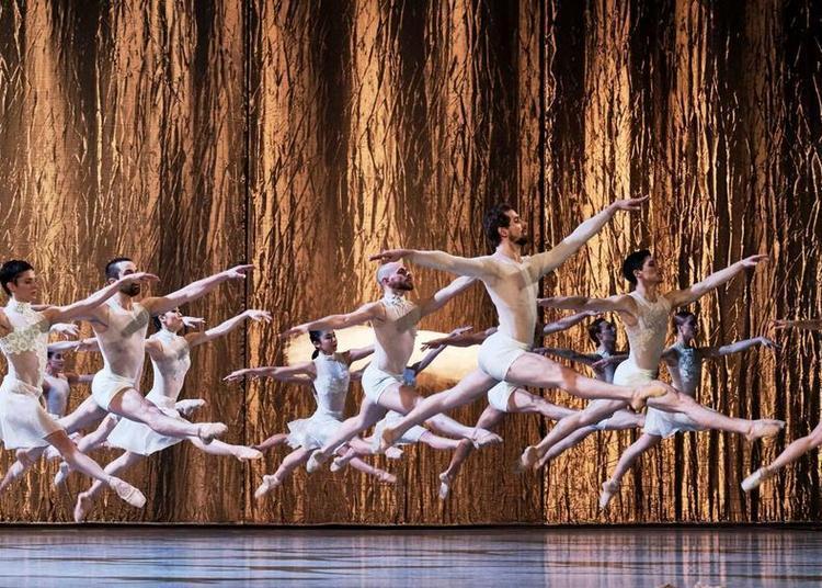 Le Lac des cygnes | CCN - Ballet de l'Opéra National du Rhin - Radhouane El Meddeb à Sete