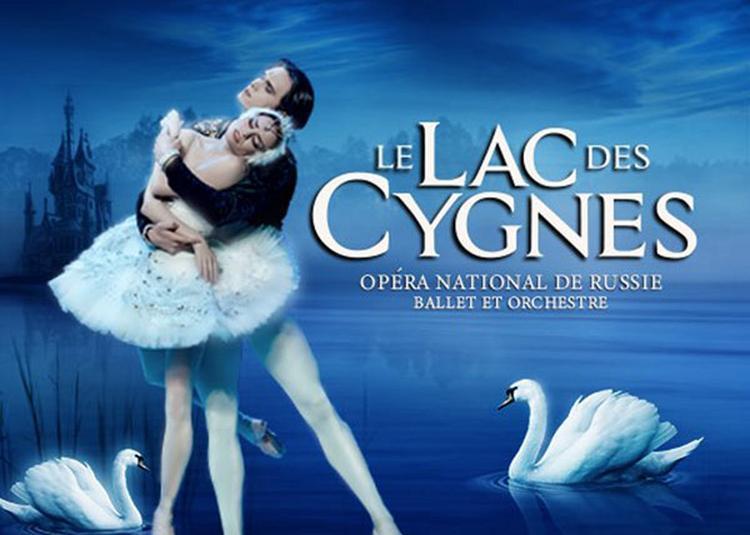 Le Lac Des Cygnes à Angers