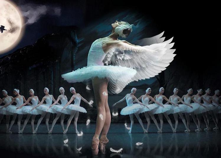 Le Lac Des Cygnes - Ballet & Orch à Dijon