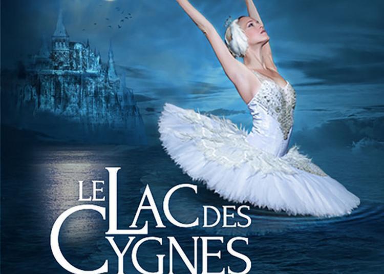 Le Lac Des Cygnes - Ballet & Orch - report à Grenoble