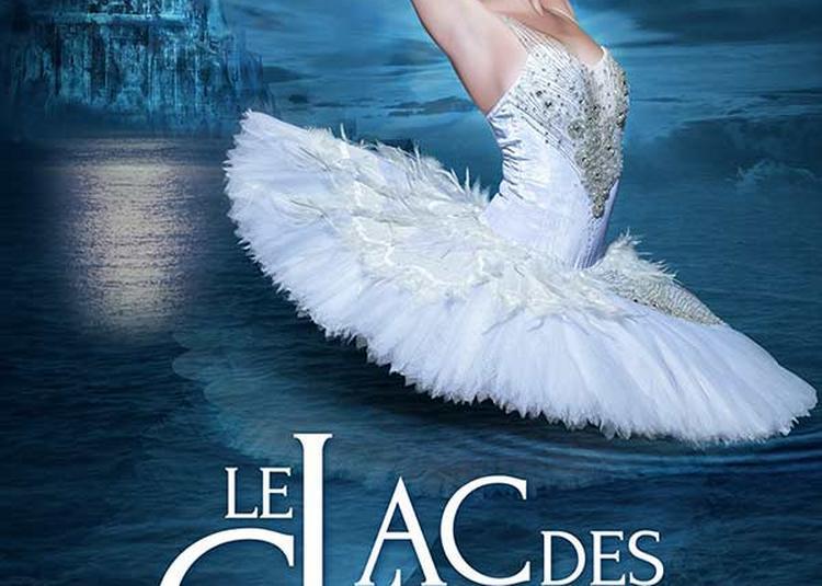 Le Lac Des Cygnes - Ballet & Orch - report à Dijon