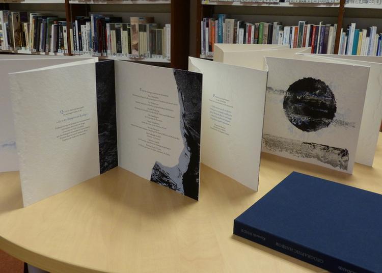 Le Livre D'artiste, Art Du Partage à Vannes