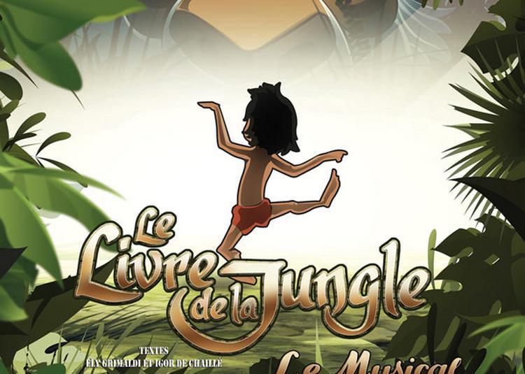 Le Livre De La Jungle à Pau