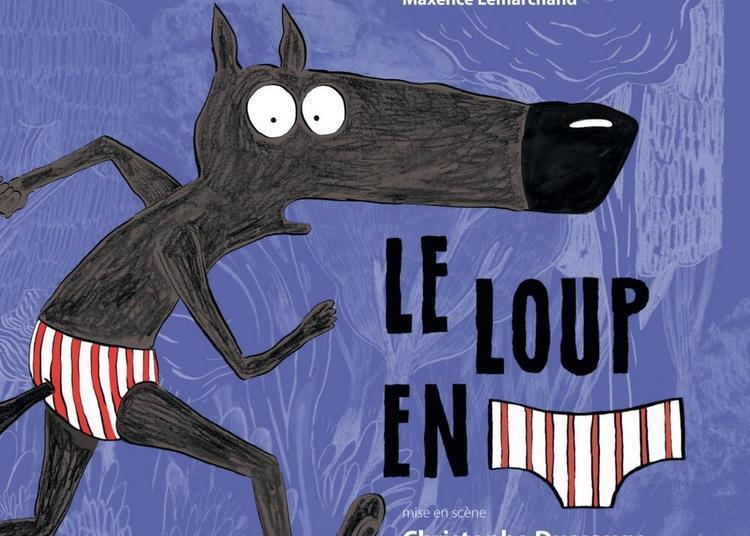 Le loup en slip à Lyon