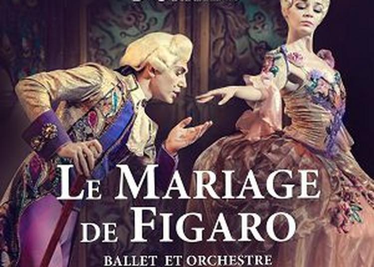 Le Mariage De Figaro à Lille