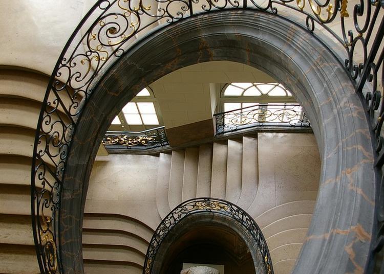 Le Musée Des Beaux-arts Vous Raconte Son Histoire à Nancy