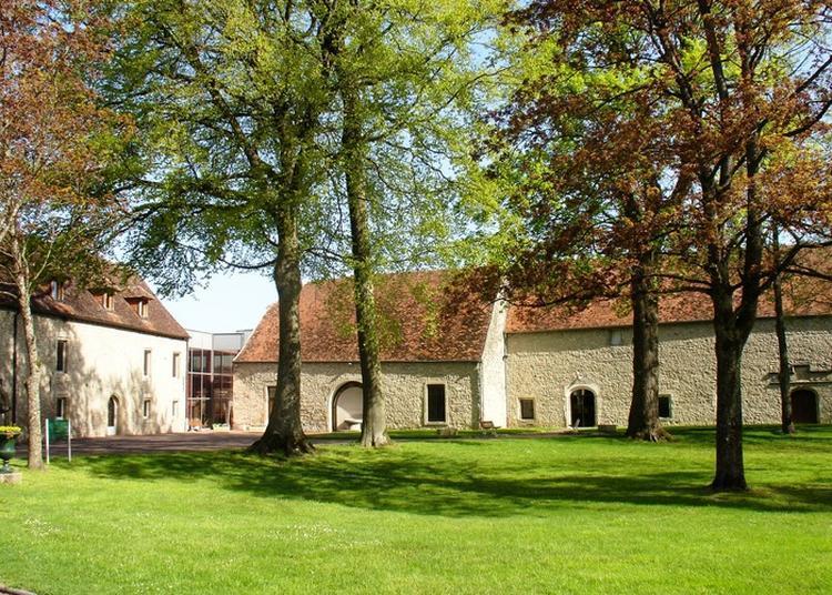 Le Musée En Continu à Bourbonne les Bains