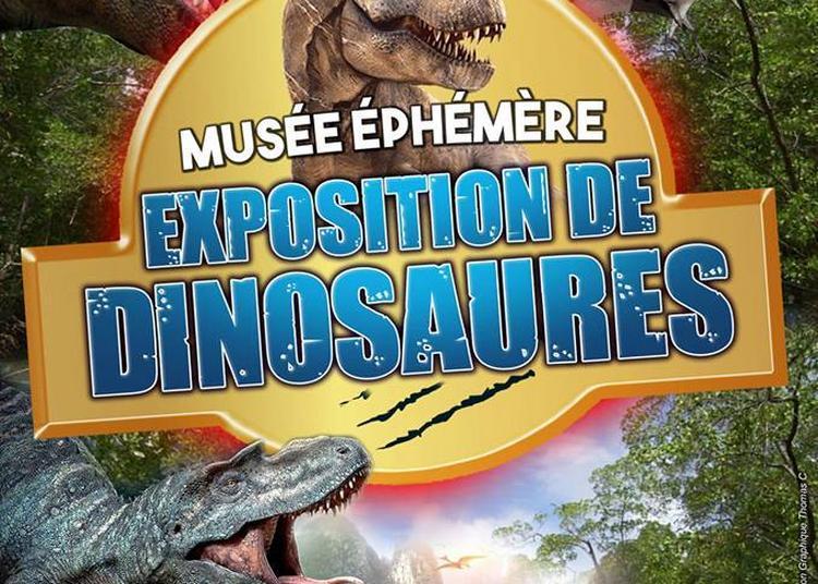Le Musée éphémère: Exposition de dinosaures à Objat