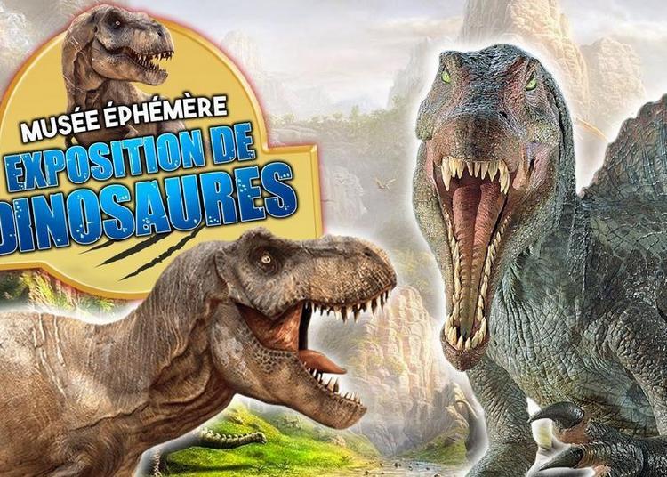 Le Musée Ephémère: Exposition de dinosaures à Chalons en Champagne