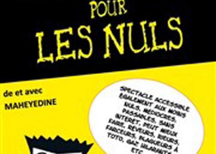 Le One Man Show Pour Les Nuls à Lille