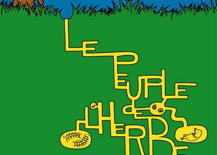 Le Peuple De L'Herbe + à Auxerre