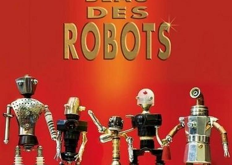 Le Plus Beau Des Robots à Paris 12ème