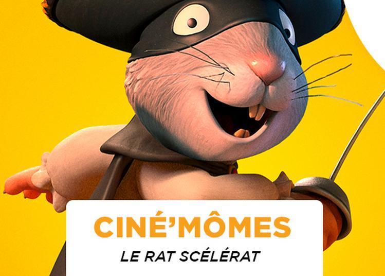 Le Rat Scélérat à Tinqueux