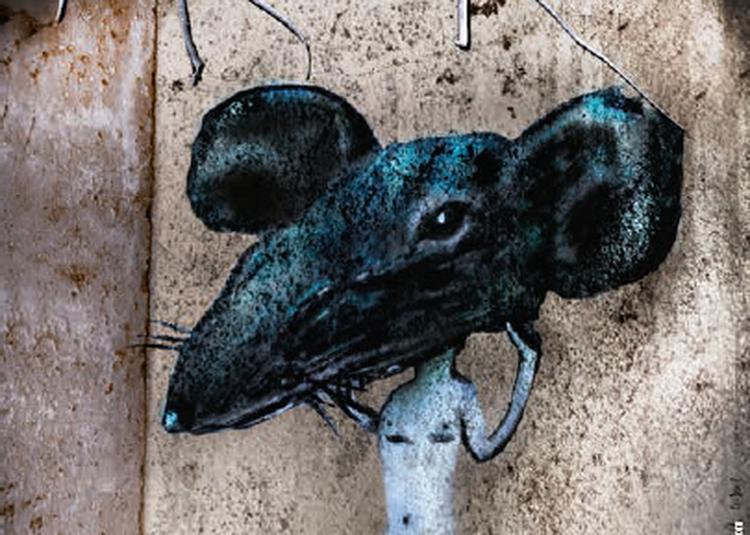 Le Roi des rats à Saint Gratien