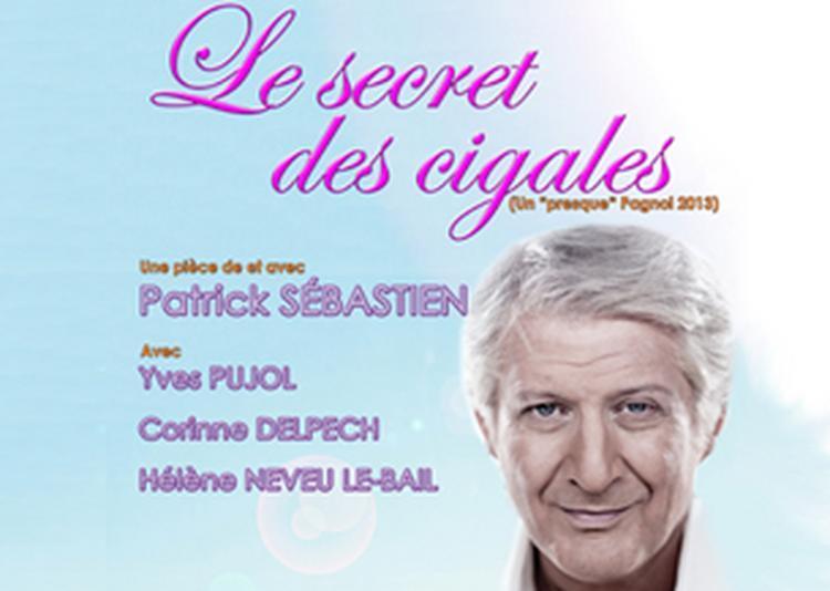 Le Secret Des Cigales à Marseille