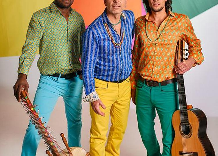 Le Trio Colibri à Miramas