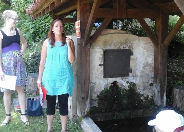 Le Village De Duhort-bachen Vous Réserve Des Surprises ! à Duhort Bachen