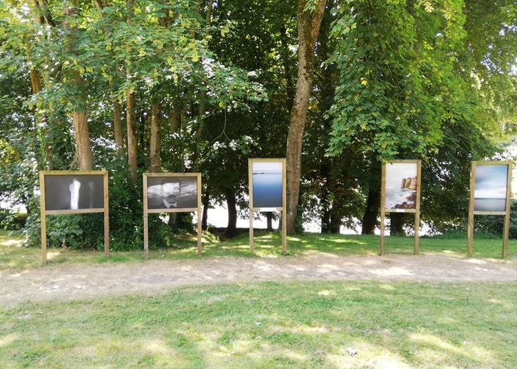 Lecture Déambulatoire En Clôture Du Festival De Photographie Photos En Poésie à Landivisiau