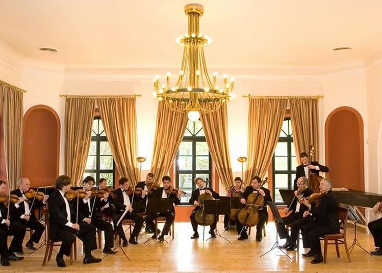 Lena Neudauer / Violon et l'Orchestre Franz Liszt de Budapest à Merignac