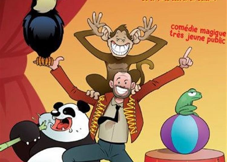 Les Animaux Font Leur Cirque à Cugnaux