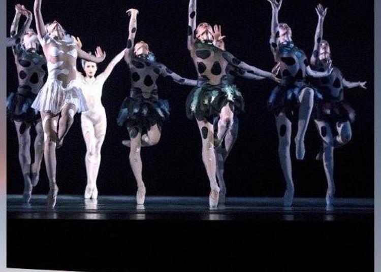 Les Ballets De Monte-Carlo / Jean-Christophe Maillot - Le Songe à Paris 16ème