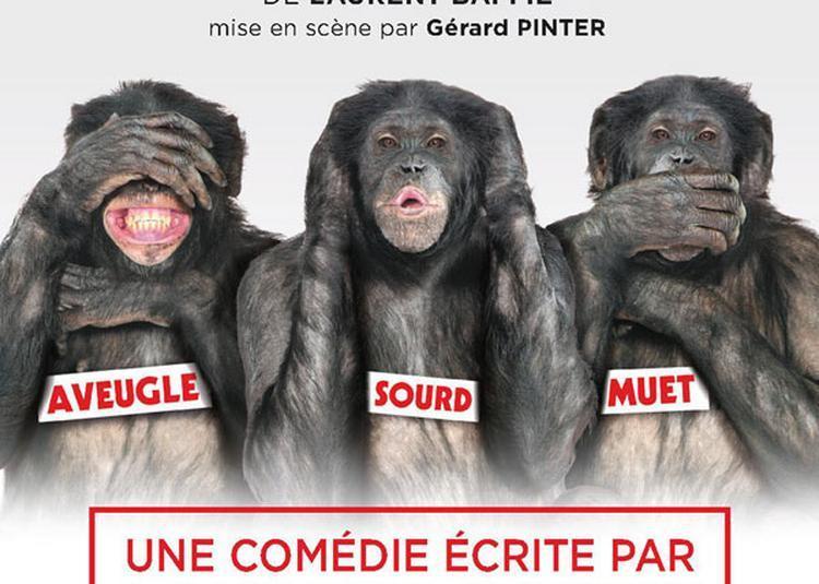 Les Bonobos à Toulouse