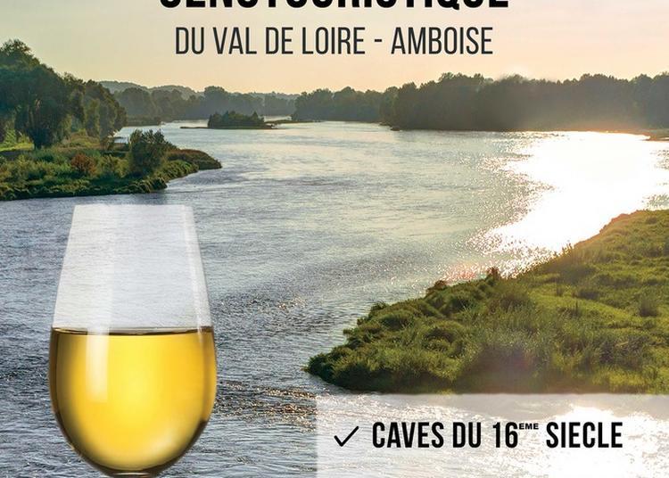 Les Caves Duhard : L'expérience Oenotouristique Du Val De Loire à Amboise
