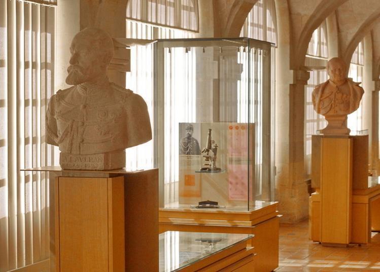 Les Collections Du Musée Du Service De Santé Des Armées à Paris 5ème