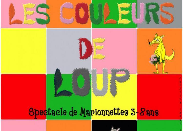 Les couleurs de Loup. à Muret