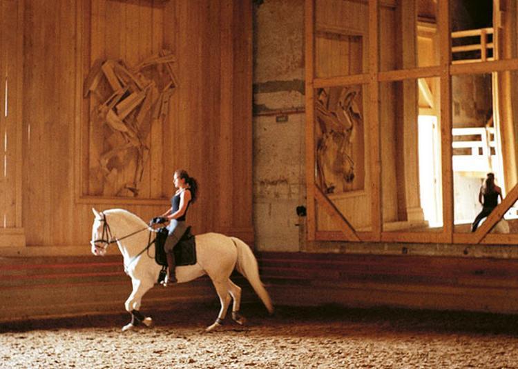 Les Coulisses De à Versailles