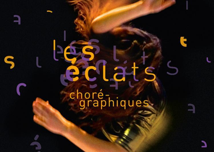 Les Éclats Chorégraphiques 2017