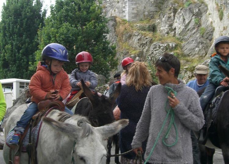 Les Enfants, Visiteurs Stars Des Journées Du Patrimoine à Lourdes