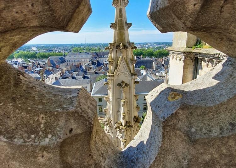 Les Hauteurs De La Cathédrale à Orléans