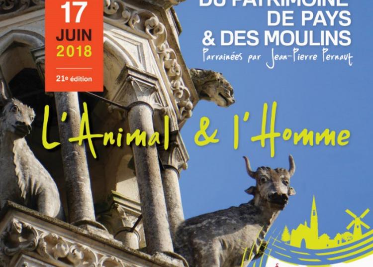 Les journées du Patrimoine de Pays et des Moulins à Saint Pierre sur Erve