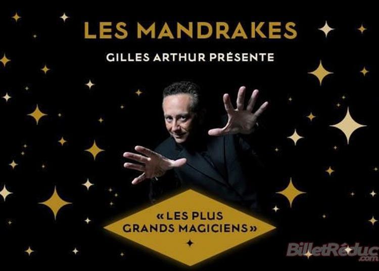 Les Mandrakes D'Or 2021 à Enghien les Bains