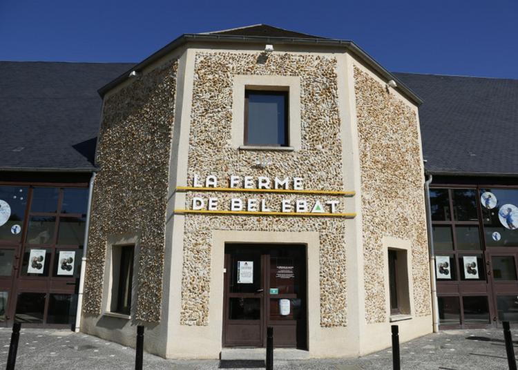 Les Métiers D'hier Et D'aujourd'hui À La Ferme De Bel Ebat à Guyancourt