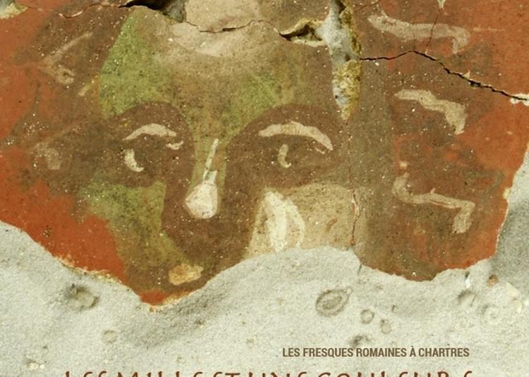 Les Mille Et Une Couleurs D'autricum, Les Fresques Romaines à Chartres