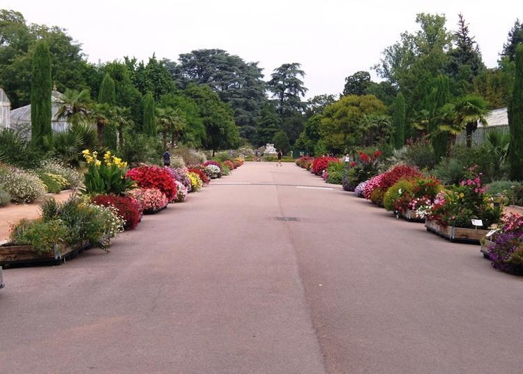 Les Mini-jardins® Connectés Au Parc De La Tête D'or à Lyon