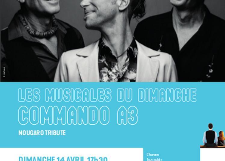 Les Musicales Du Dimanche à Labastide saint Pierre