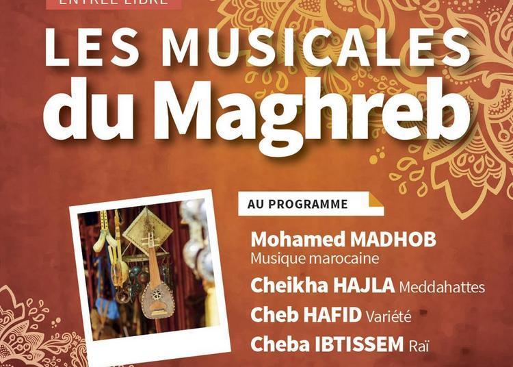 Les Musicales Du Maghreb à Grigny