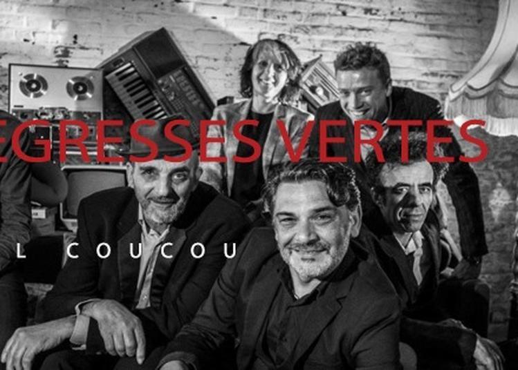Concert Les Negresses Vertes à Salon de Provence